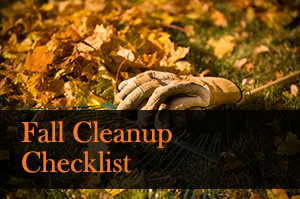 Fall Cleanup Checklist