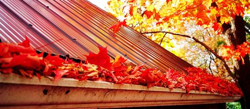 Fall Gutter Cleaning Services